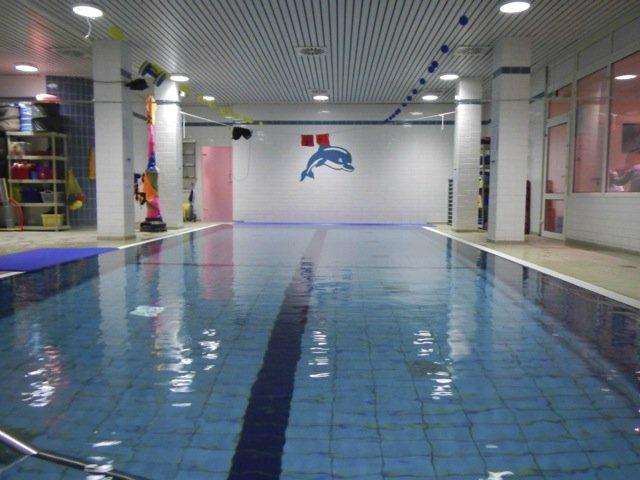 Delphin Schwimmschule Hollenstedt