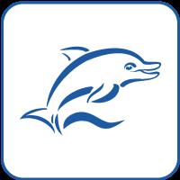 Schwimmkurse in Hamburg | Schwimmschule Delphin